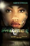 sandler-2-awakening-ag15